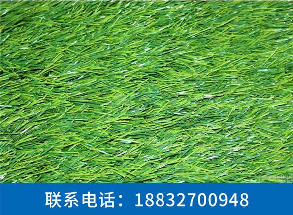 仿真草坪生产厂家临邑