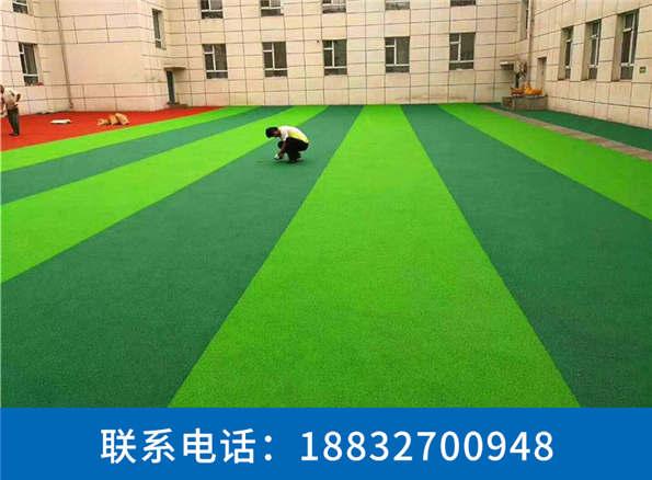 塑料草坪厂家直销蠡县